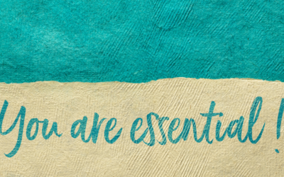 Learn from the Wise- Louise Lynn Hay