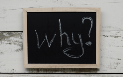 Why ask the why?